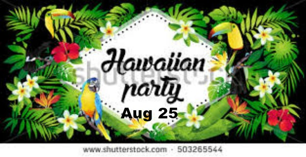 Hawaiian Theme Party